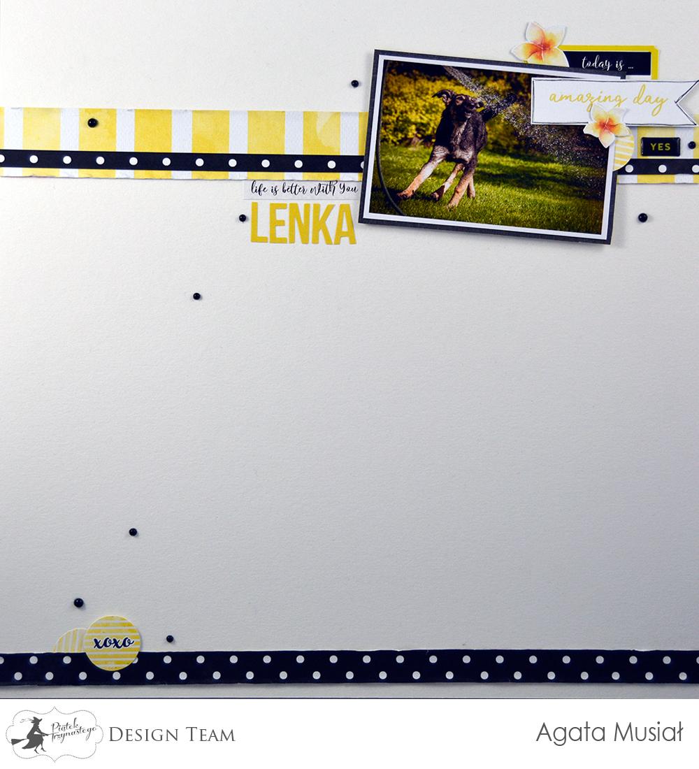 layout z okazji Dnia Psa